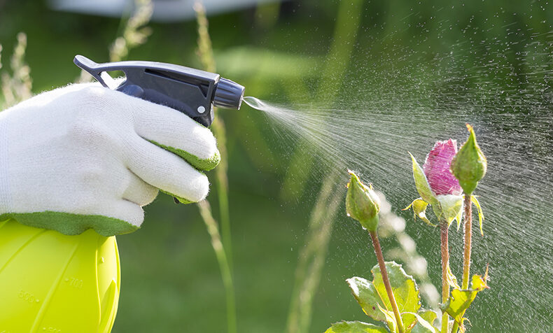 Gardening with Fewer Chemicals - Introduction to IPM.